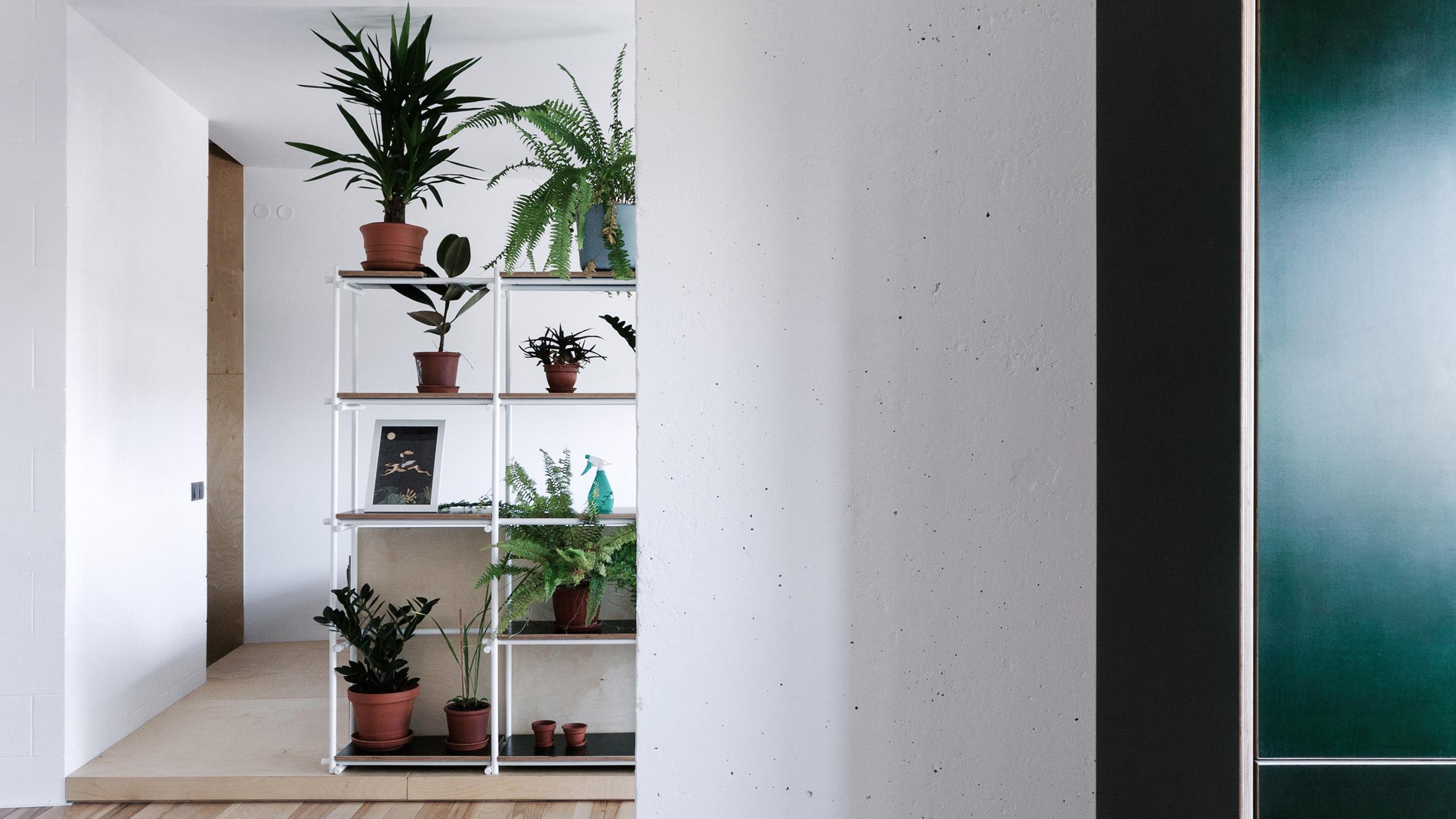 Зелена кухня и стена от растения дават стил на апартамент в Украйна