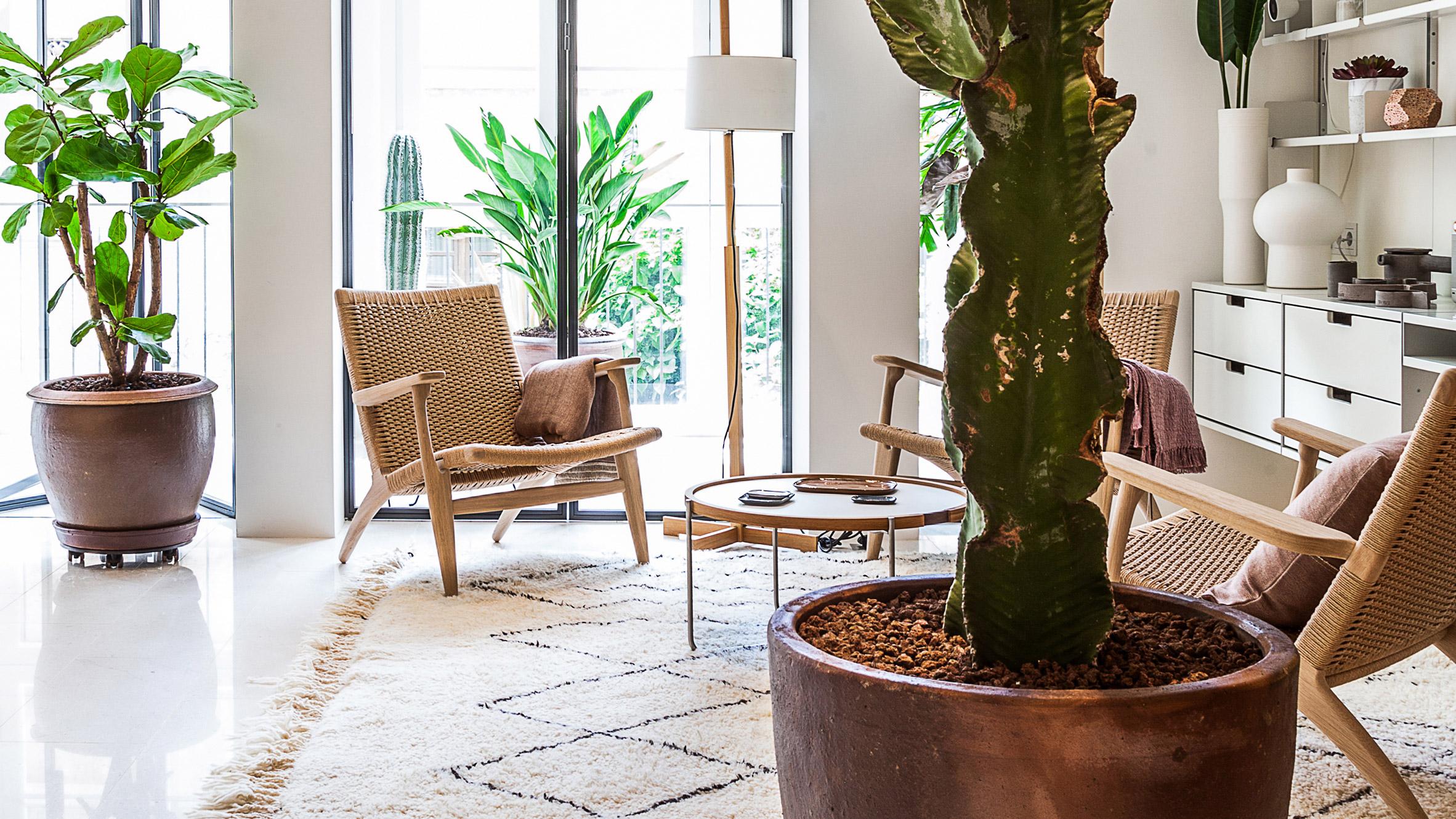 Апартамент за почивка с вътрешна градина и скрита кухня